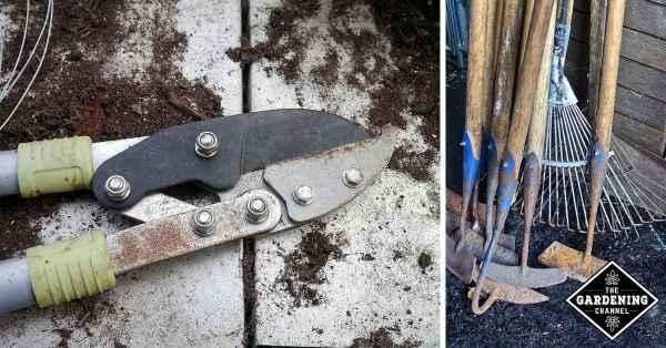 gardening tool care
