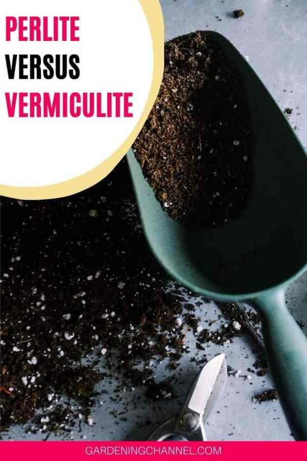 container garden soil with text overlay perlite versus vermiculite
