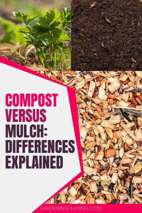straw wood chips compost with text overlay compost versus mulch differences explained