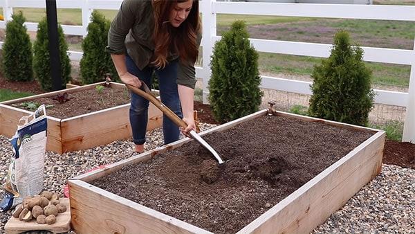Prepare the planting area