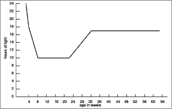 Lighting schedule graph