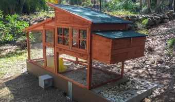 Final chicken coop