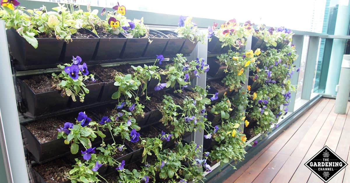 Creative Ideas To Grow A Vertical Garden In Your Small Space