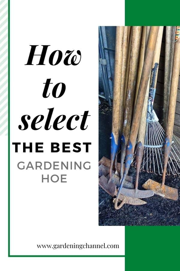 gardening tools in shed with text overlay how to select the best gardening hoe