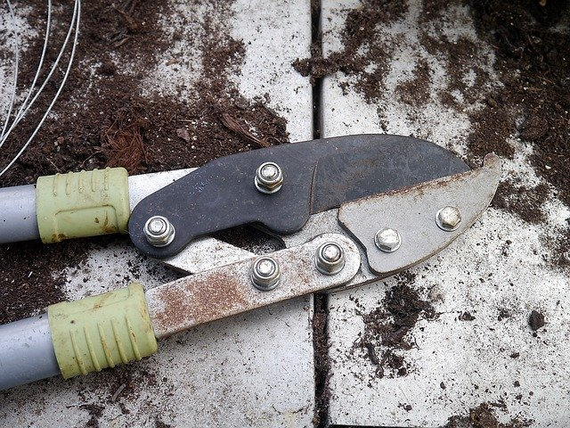 gardening and pruning tools