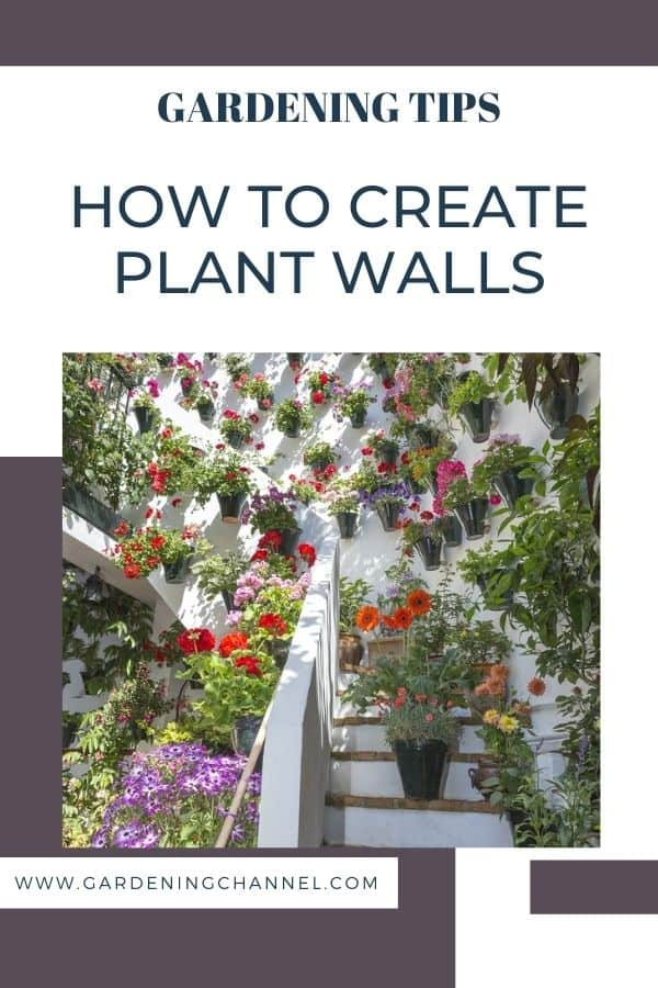 vertical flower garden with text overlay gardening tips how to create plant walls