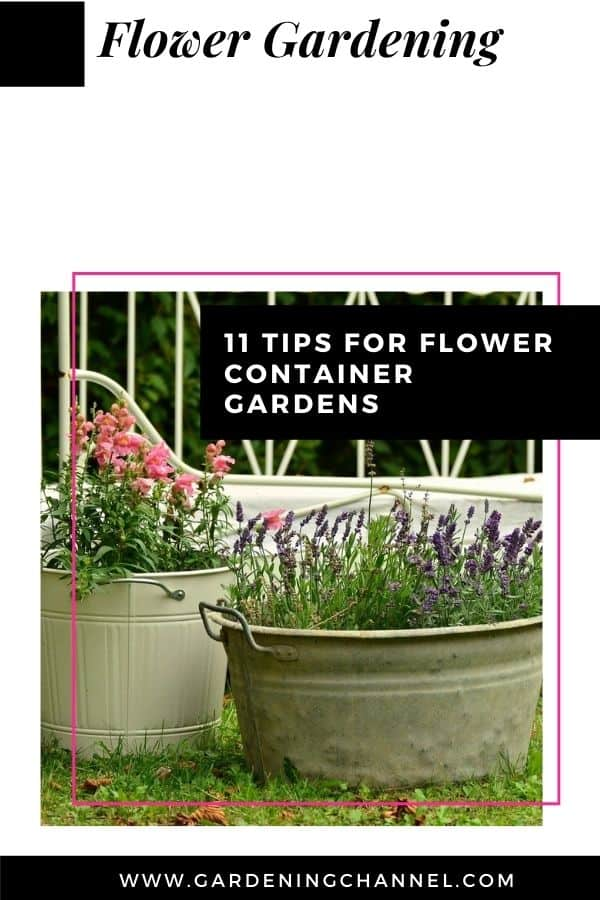 flowers growing in containers with text overlay flower gardening eleven tips for flower container gardens