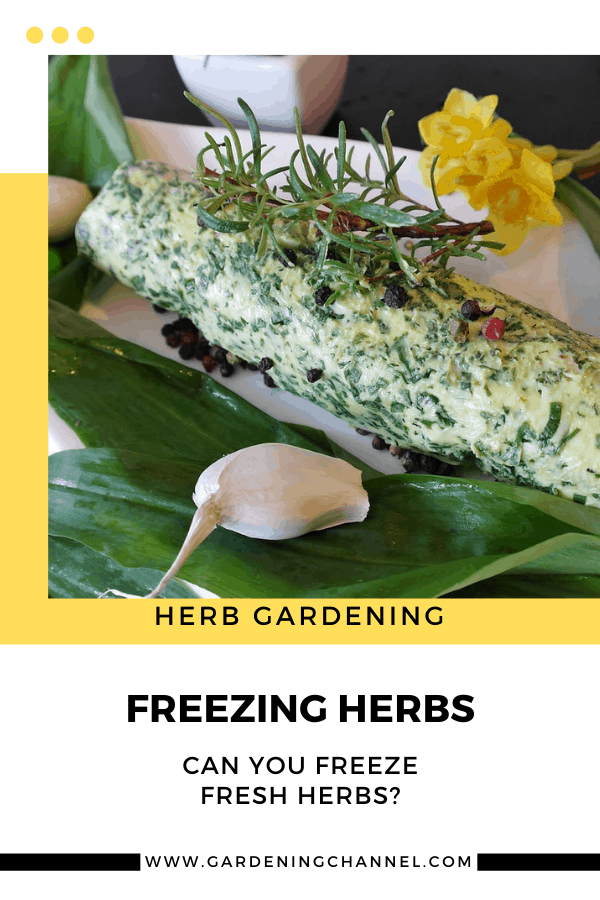 herb butter with text overlay herb gardening freezing herbs can you freeze fresh herbs