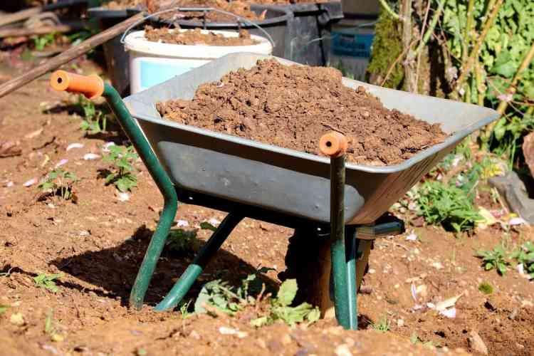 flower potting soil in a wheelbarrow for a vegetable garden