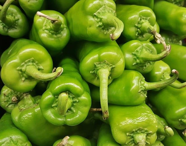 Anaheim peppers harvested
