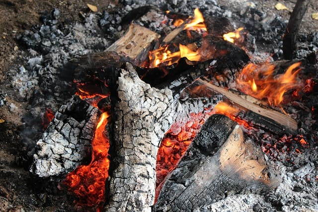 fire burning with wood ash
