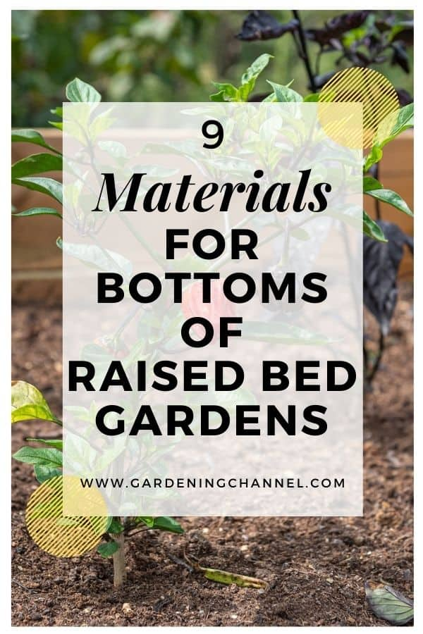 peppers in raised bed with text overlay nine materials for bottoms of raised bed gardens