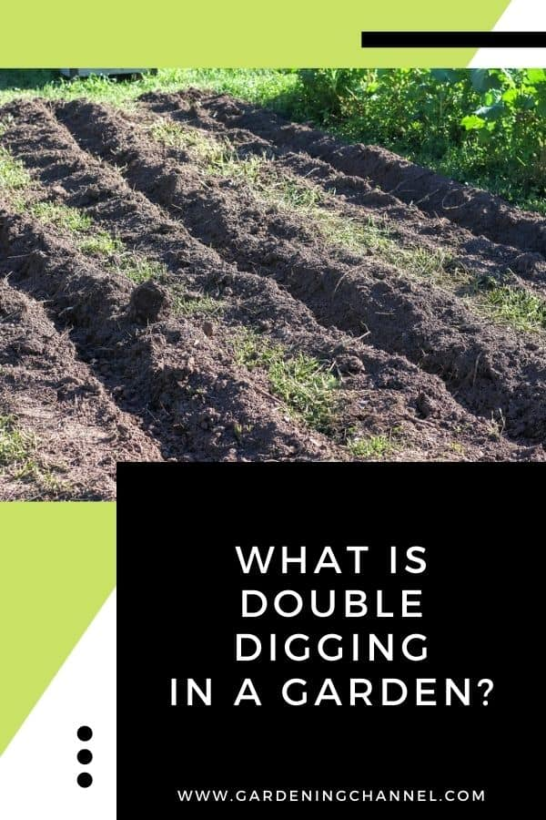 vegetable garden with text overlay What is double digging in a garden?