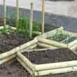 Raised veg beds, Orton