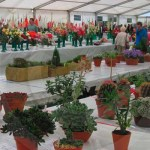 The amateur grower's tent