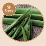 Runner Bean Scarlet Emperor 50 Seeds, £2.99