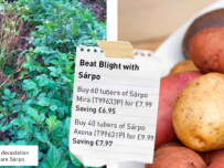 Grow Blight Resistant Potatoes