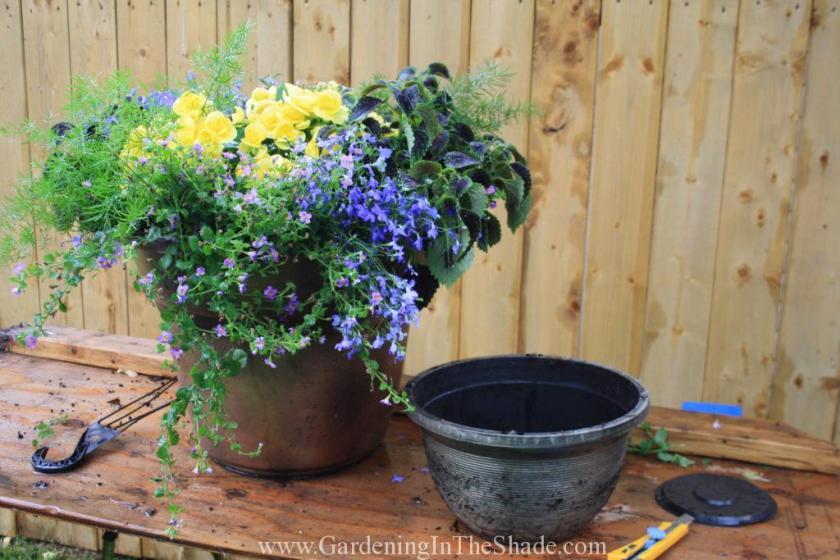 Instant Patio Planter