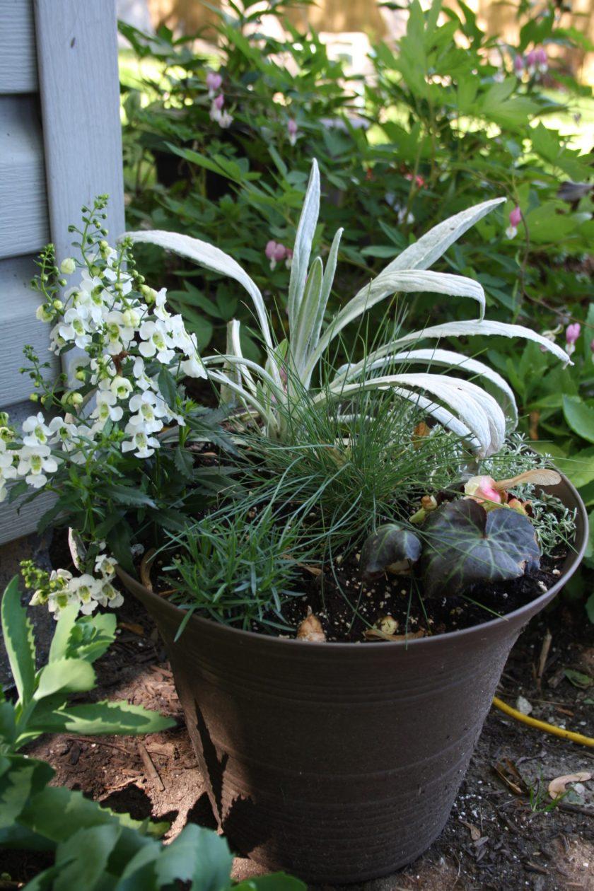 Bello Grigio Planter