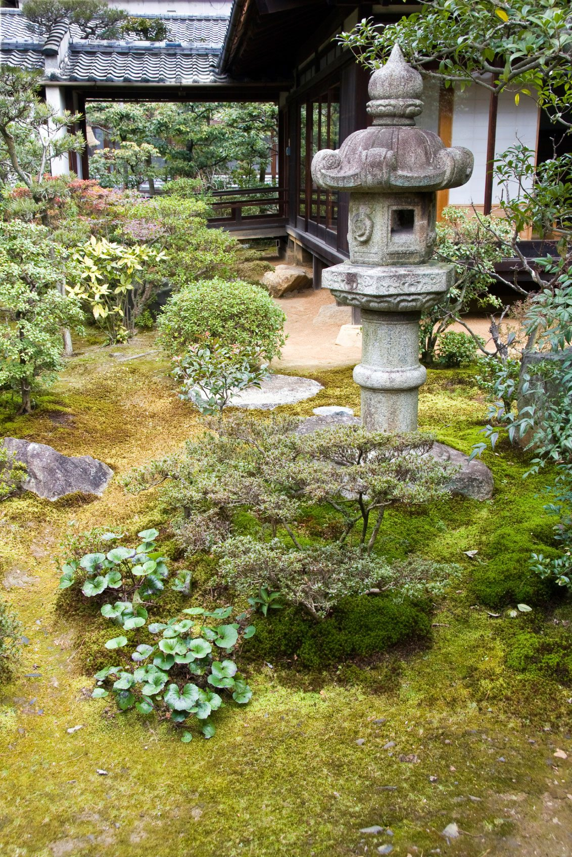 Ornamental Rocks Garden