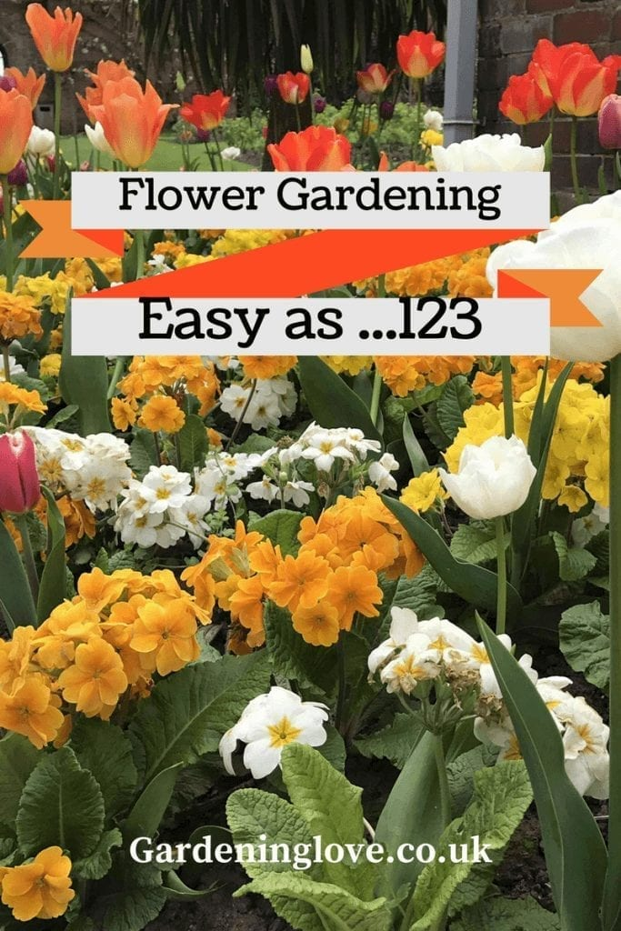 Flower gardening easy as 123 a variety of colourful flowers in a flower garden