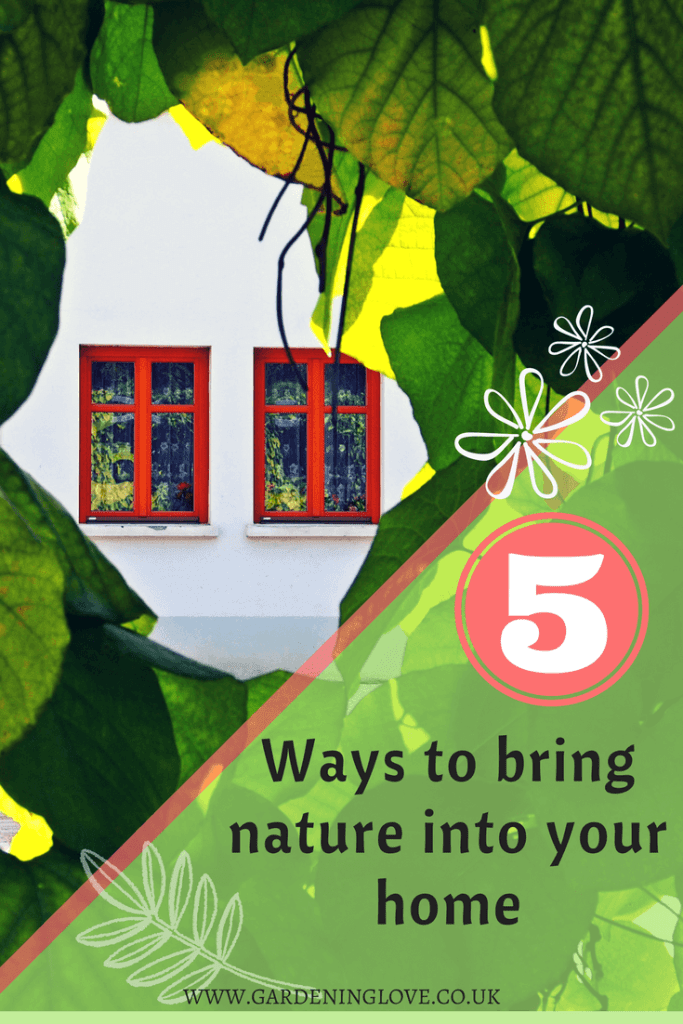 Looking at a house through a leafy bush. 5 ways to bring nature into your home. Www. Gardeninglove.co.uk
