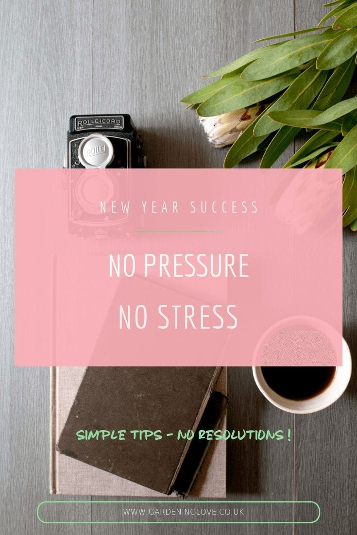 new year success, the no pressure guide to sustainable new year habits