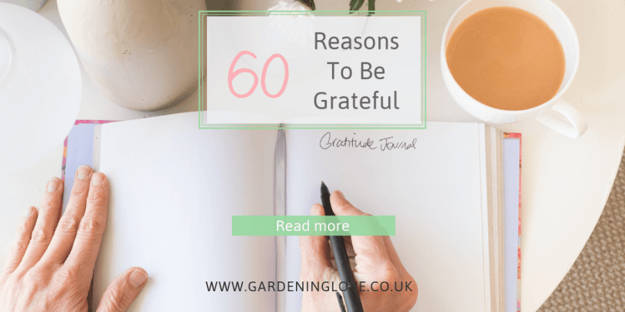 60 reasons to be grateful when life gets tough.Appreciation and gratitude for life's little things. #gratitude #grateful #appreciation #life #personaldevelopment