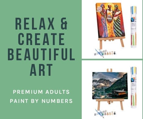 Winnie's Picks premium adults paint by numbers #paintbynumbers #affiliatelink