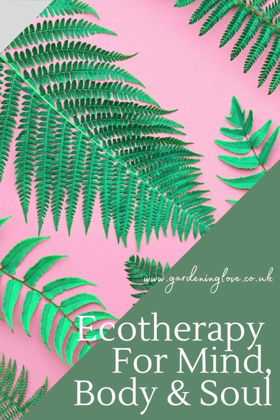 How to practice Ecotherapy as a part of your self care and wellness routine. The benefits of ecotherapy on mind, body and soul. #ecotherapy #nature #greentherapy #shinrin-yoku