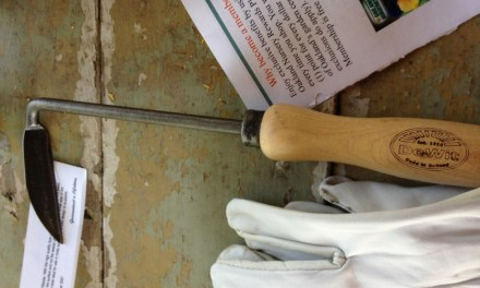 A DeWit Cape Cod Weeder, The Tool I'd Take To A Desert Island
