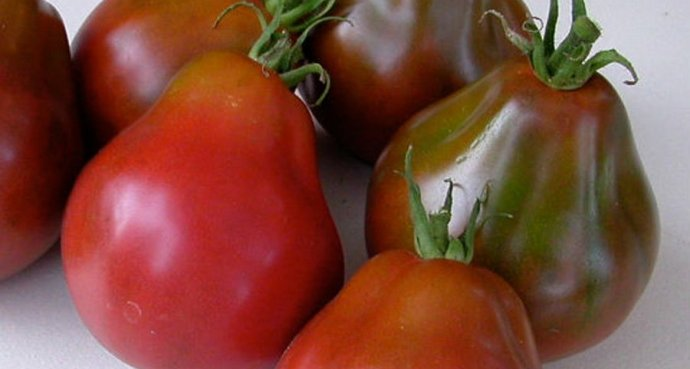 best-tomatoes-to-grow-in-a-container_7