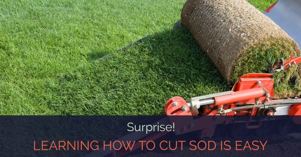 how-to-cut-sod