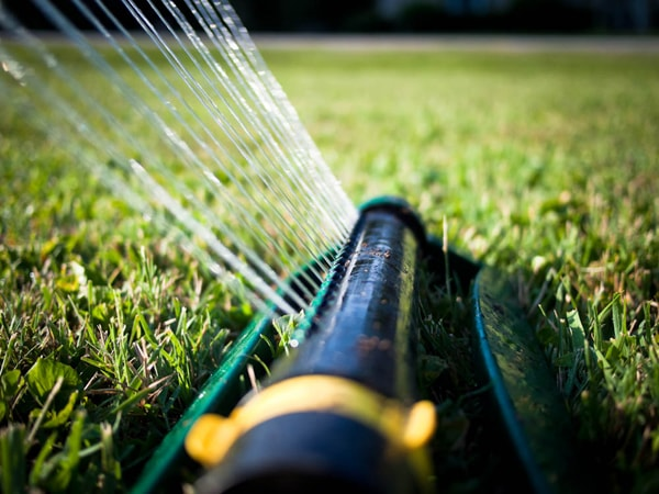facts-about-lawn-sprinkling-water-morning