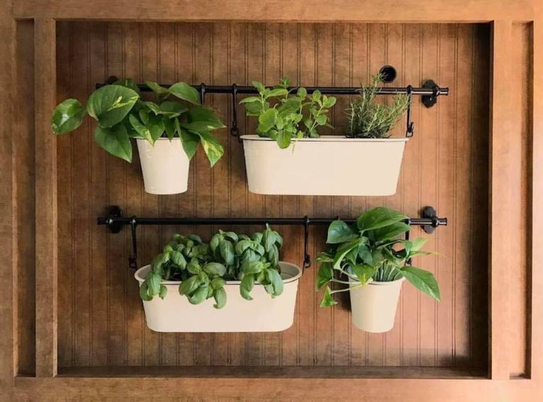 hanging-plants-in-RV