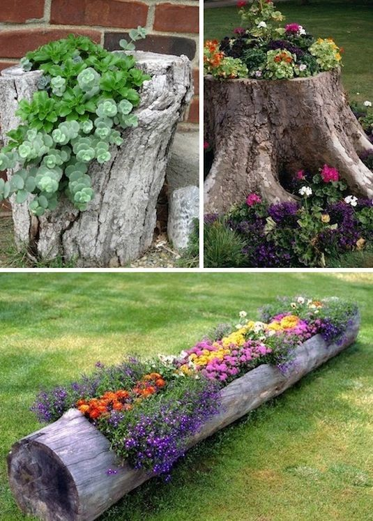 maintain-your-yard-with-small-cost-2
