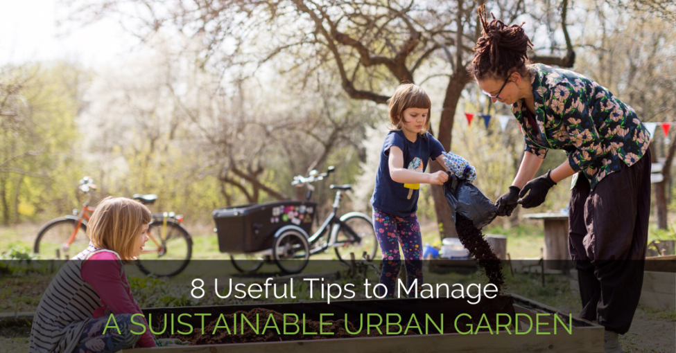 manage-sustainable-garden
