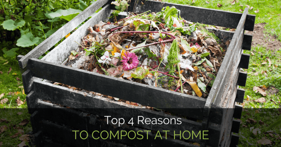 compost-at-home