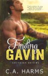 FINDING GAFIN