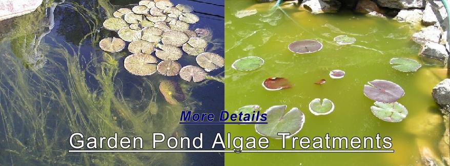 Garden Ponds Pond Supplies Water Gardens Concrete Molds