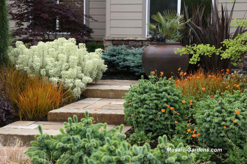 Back Porch Ideas Pictures