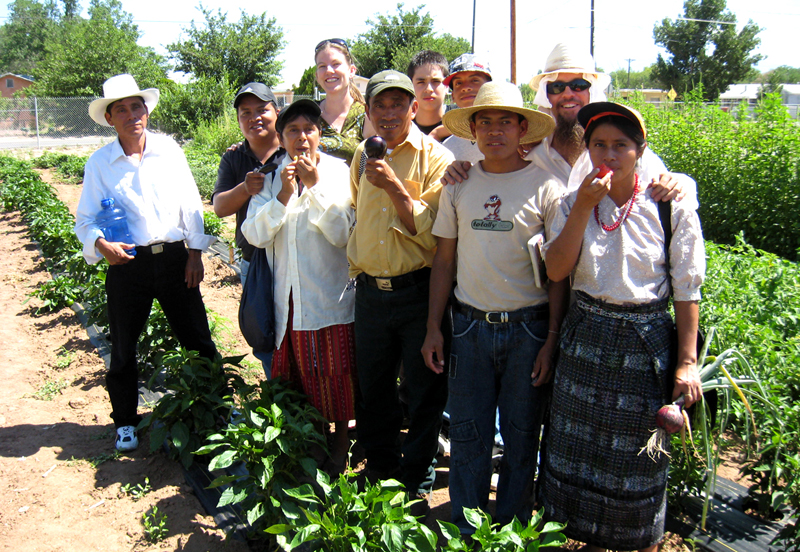 Guatemalan farmers learning and teaching at Dragon Farm in Albuquerque, New Mexico
