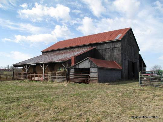 Tobacco barn with additions, Franklin County, Kentucky
