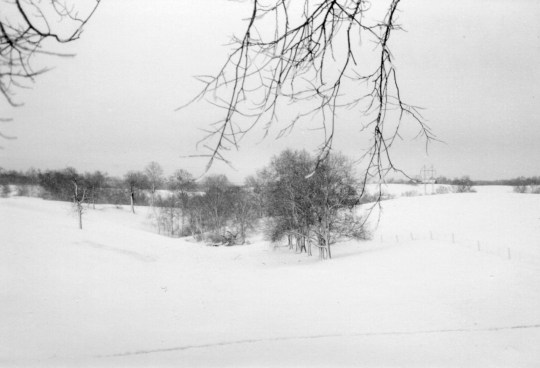 One of the last big snows in the Bluegrass - 1998