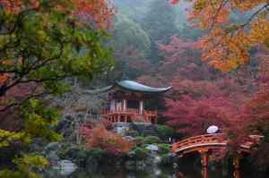 Tuinreis naar Japan