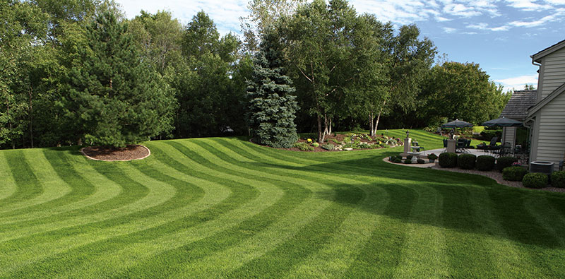 Lawn Striping Bend Style