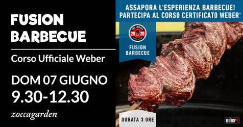 fusion barbecue