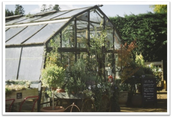 picture-21-petersham-nurseries