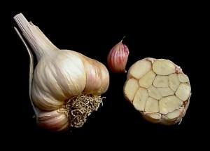 Silverskin garlic bulb