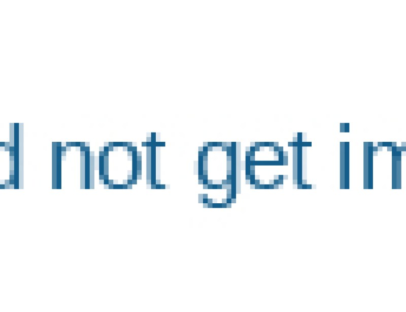 Double-Cutter-Garlic-Root-Concave-Cutting-Machine